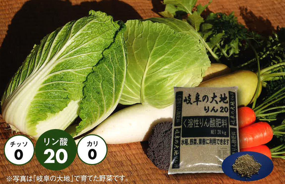 JapanPicture1